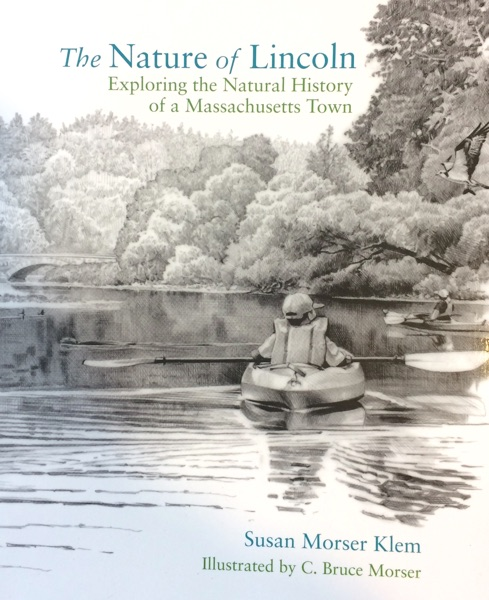 Nature of Lincoln cover image