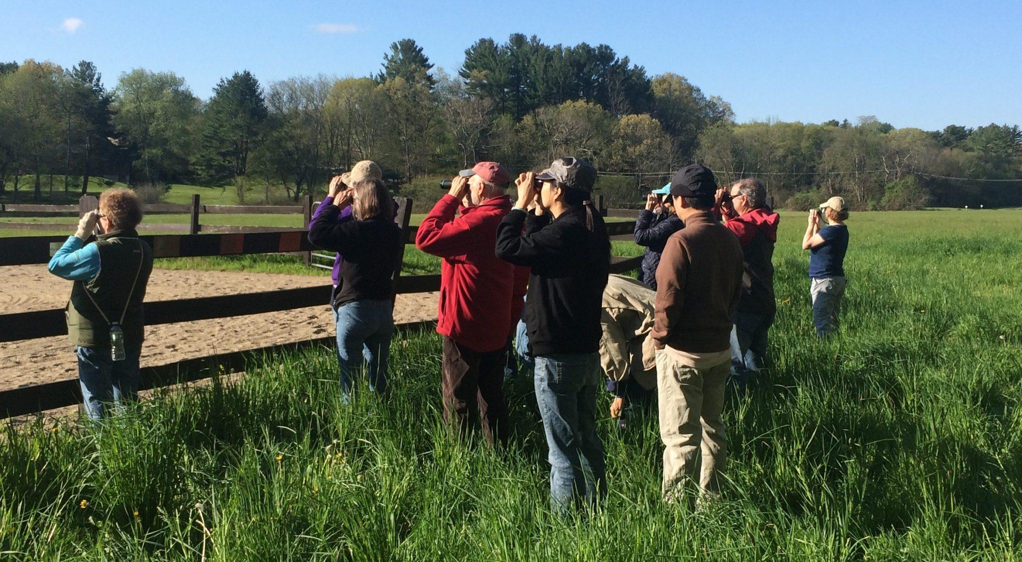 Spring Birding in Lincoln