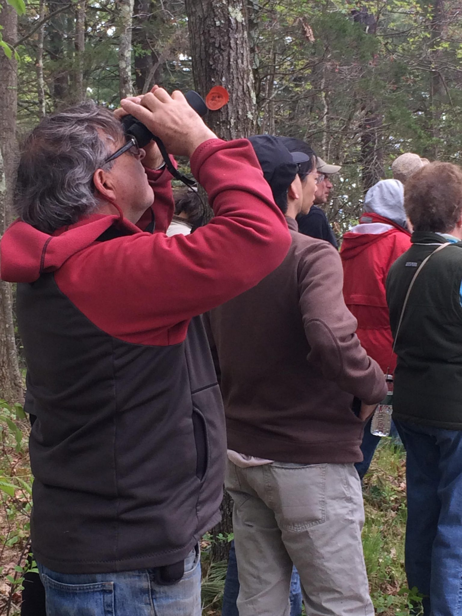 Annual Spring Birding in Lincoln Series from April through May