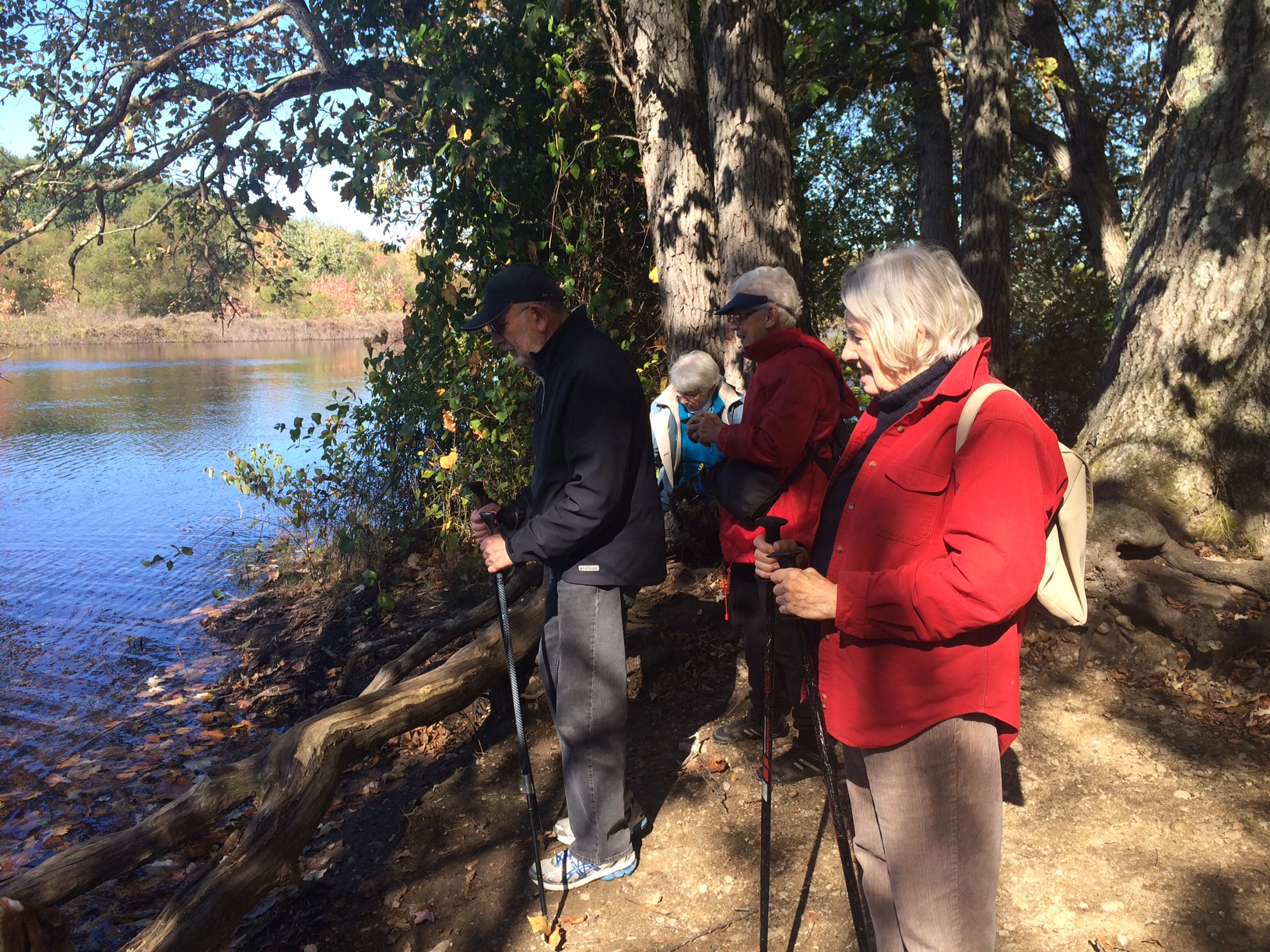 Rescheduled Again to 11/20: Noticing Walk with John Calabria at Flint's Pond