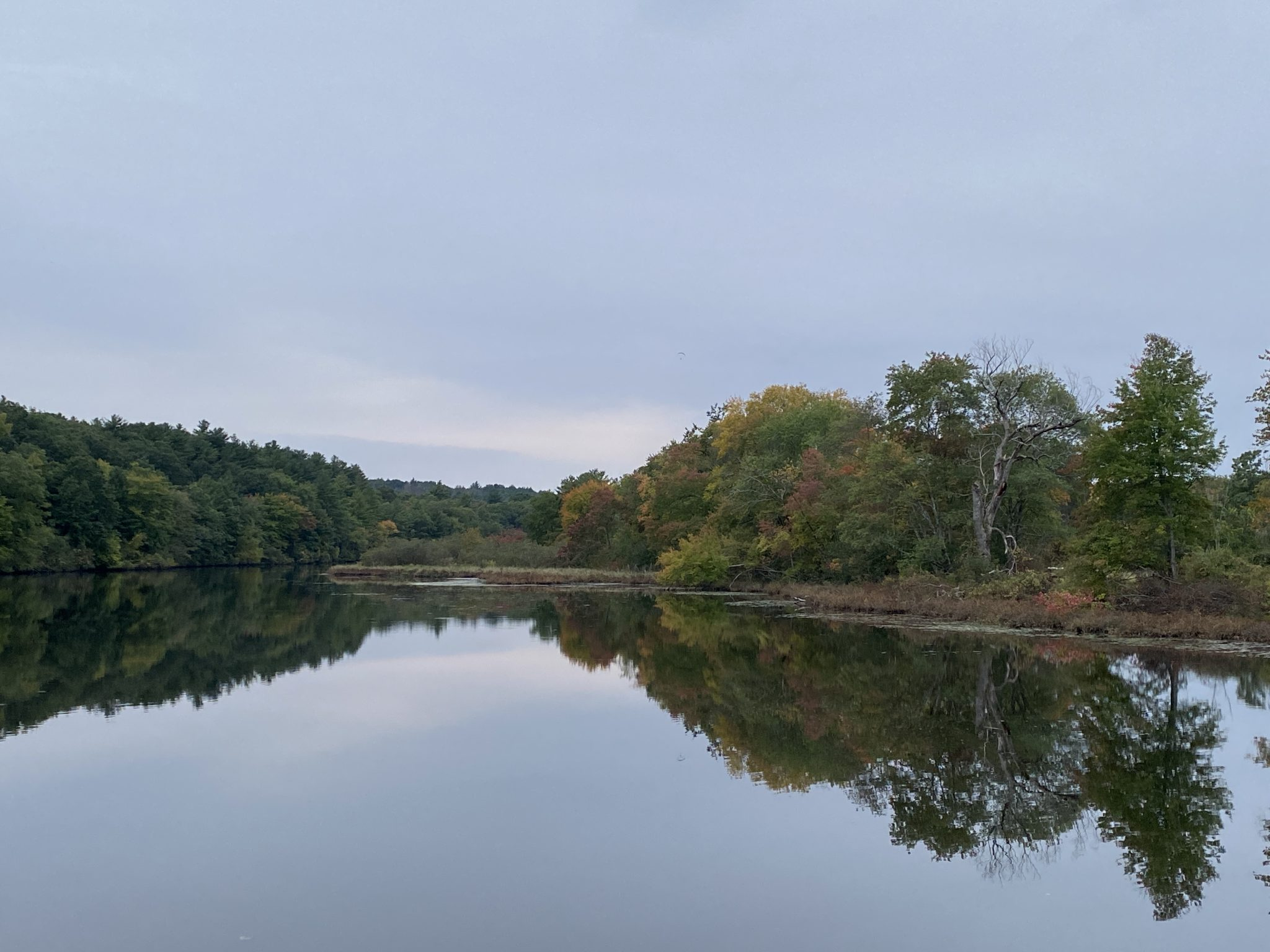 Are Our Rivers Healthy? Tackling Pollution in the Sudbury River